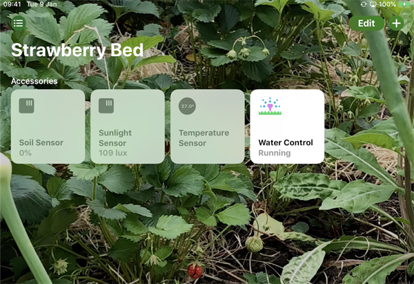 Hey, Siri! Please turn on the Water Control in my Strawberry Bed.