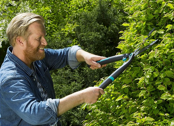 Hedge Clipper EasyCut