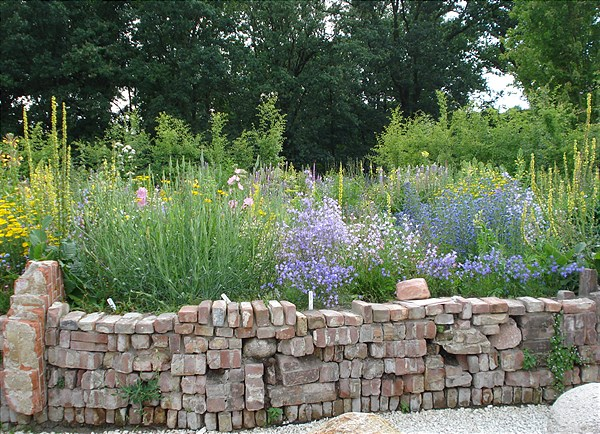Dry-stone wall for endangered and rare species